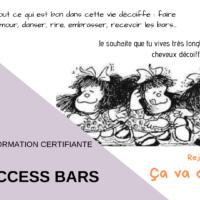 Formation Access Bars - Valence - Drôme - 15 juin 2019